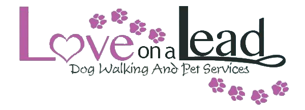 Your first choice for a professional and reliable dog walker in Brighton & Hove.